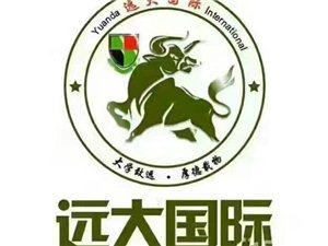 郑州  IC电工火热招生中