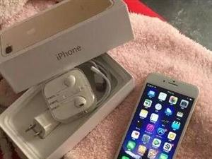 出售个人的手机,金色的,一直闲着在家