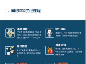 想學網站seo優化的朋友們來云極網絡找我
