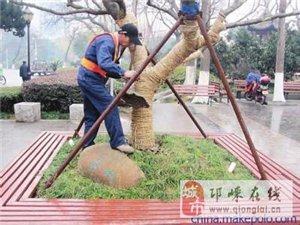 邛崃单位,工厂,小区,别墅园林绿化修剪养护