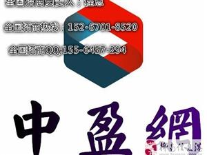 中盈网互联网券商招商加盟代理