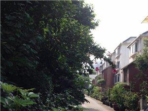 紧急出售位于江北黄金堡的老式连排别墅一套