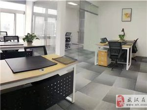 小型公司的大形象精装办公室全配套(直租)