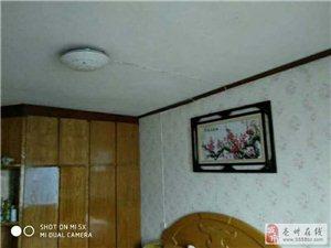 小洋桥东蓝天小区3室1厅1卫650元/月