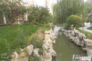 锦绣花苑我的房就是性价比高~