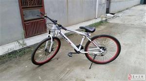 出售新捷安特21速山地自行车一辆