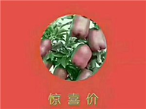 自家種的甘肅天水蛇果,自然成熟,純天然綠色果品,蘋