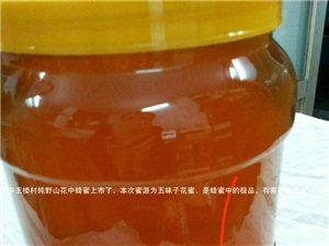 夏冲中蜂养殖场纯野山花中蜂蜜出售70元二斤
