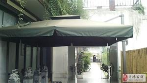出售户外遮阳伞.最大号