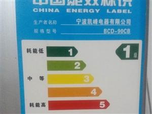 9成新低能耗冰箱出售