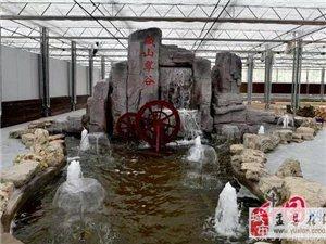 藏山翠谷歡迎您!!!13111234327