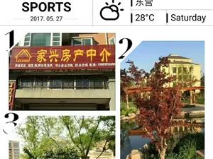 稻庄湖东郦城3室2厅1卫53万元