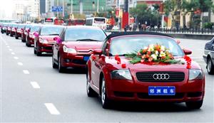 婚车出租|可组车队|奥迪宝马奔驰样样齐全