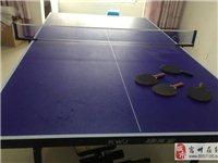 9.9新乒乓球案子低價處理