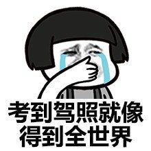 广东学小车、大车,三个月内拿证!