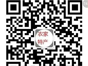 红枣片 枸杞子莲子银耳