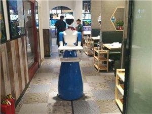 智之翔公司经销机器人