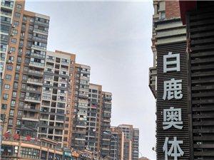 阳逻柴泊湖休闲广场湖景房仅售65.5万双证齐全