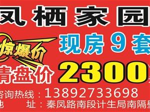 凤栖家园9套现房清盘价2300元/平米