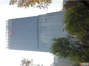 郑东新区高铁站万众大厦2200平可分割