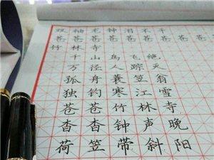 学前班小学初中各年级书写练字培训详细信息