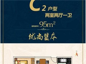 C2户型 两室两厅一卫