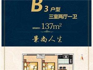 B3户型 三室两厅一卫