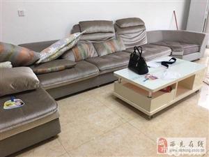 帝标沙发便宜出售