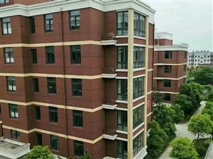 星美家园单价3980房型正气多层电梯洋房