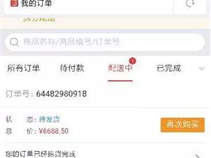 京东自营店抢购苹果八plush256
