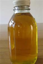 大量供应纯天然压榨桐油