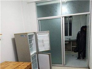 东湖名都2楼2室中装家电全1100元