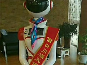 出售各種機器人