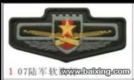 军队的领章臂章胸章国旗