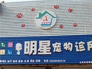 罗庄明星宠物诊所崭新装修再次盛大开业欢迎光临