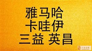 淄博钢琴专卖调律维修整理保养