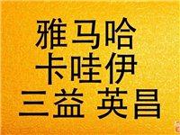 东营广饶鲁韵琴行二手钢琴专卖