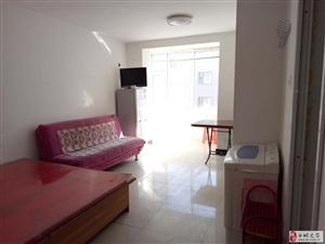 洮北宾馆和金梧桐之间,36平5层1室1厅1卫,1000元/月