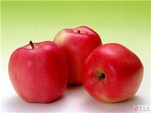 照旺莊1.5萬斤蘋果出售15725522723