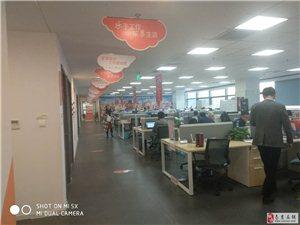 八戒财税 南京全区注册 工商注销 代账 出错包赔