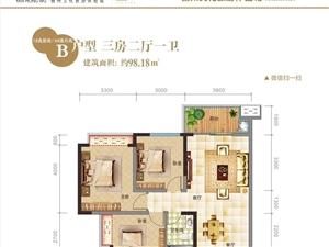万国大都会,开售115平方正大三房3室2厅2卫