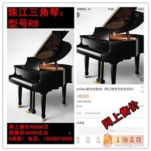 珠江三角琴:型号R8