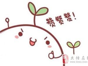 大悟老北京火鍋店自動火鍋上線拉