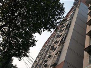 长阳县城成熟商圈君临清江清江国都酒店整体出售!