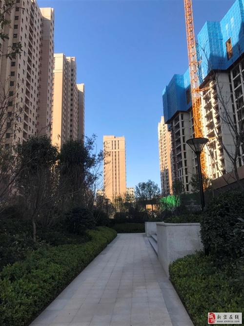 龙8国际正升·阳光城实景