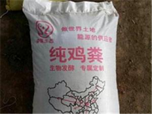 河南奮能供應發酵雞糞-干雞糞-純雞糞