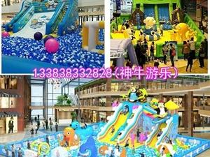 春节一起去百万海洋池玩吧,让你嗨不停
