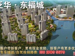 智慧之园,财富之源平湖泛华东福城