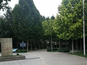 乐民小区 85平 1楼简装 英才学区房 带车库 证满2年