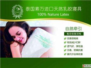 泰國素萬乳膠枕招商